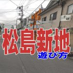 松島新地の遊び方、特徴、詳細な場所。松島新地に行ったらマジ最高だった!