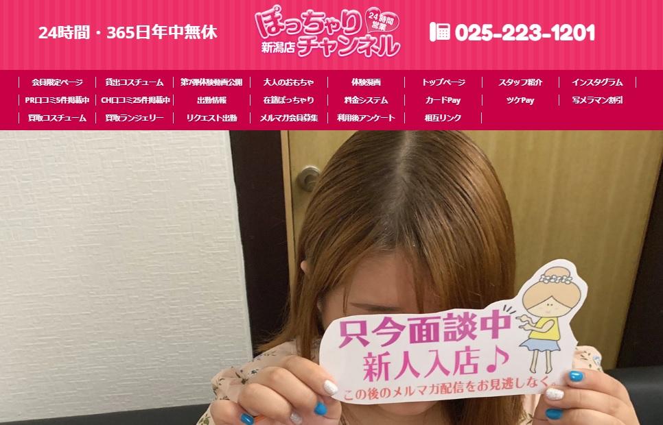 ぽっちゃりチャンネル新潟店の特徴