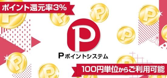 P-POINTシステム
