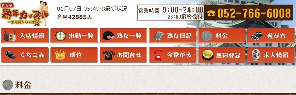熟年カップル名古屋~生電話からの営み~の料金システム
